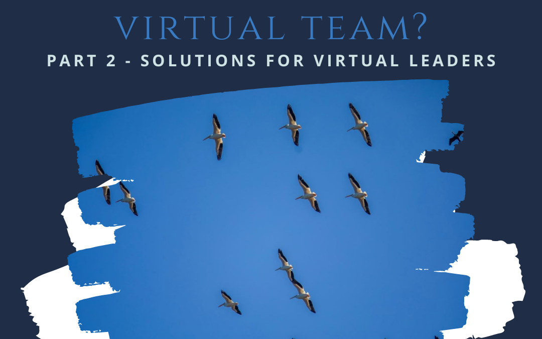 Struggling to Manage Your Virtual Team – Part 2