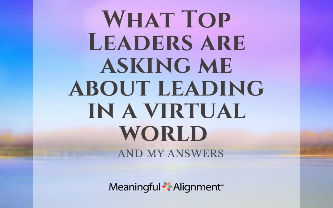 What Top Leaders Are Asking Me about Leading in A Virtual World…and my answers