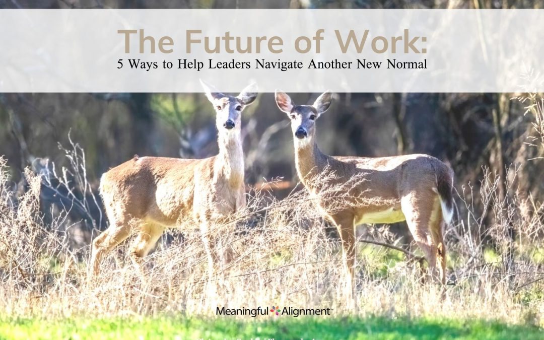 Workplace Relationships: 5 Ways to Help Leaders Navigate the New Normal
