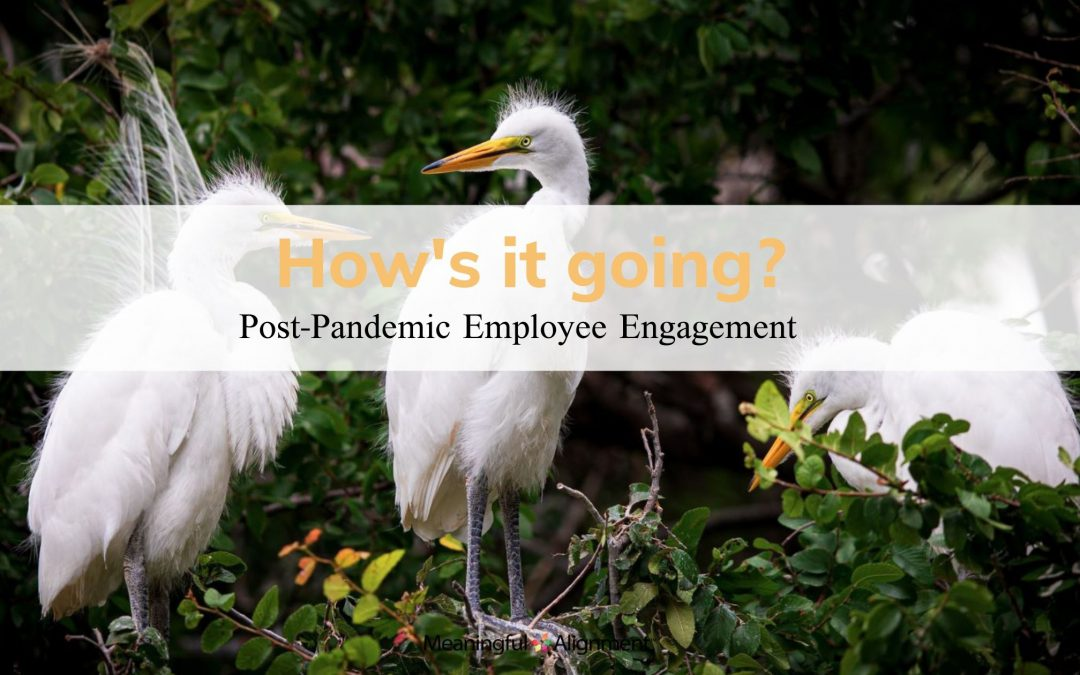 Part I: Post-Pandemic Employee Engagement: How's it going?