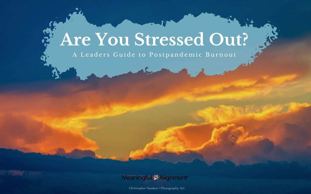 Pt II: Post Pandemic Hybrid Work: Stress or Burnout? A Leaders Guide