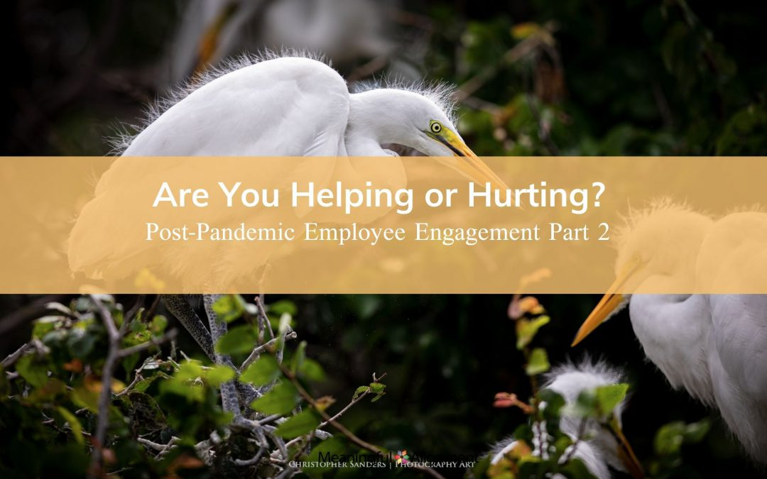 Part II: Post-Pandemic Employee Engagement: Are You Helping or Hurting?