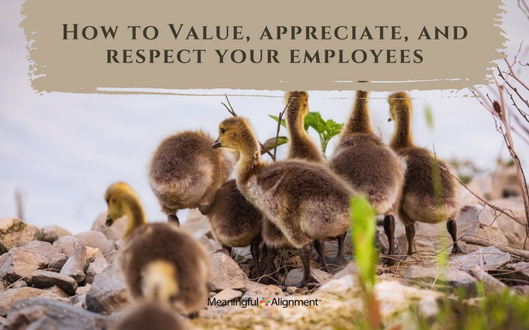 How to Value, Appreciate, and Respect Your Employees