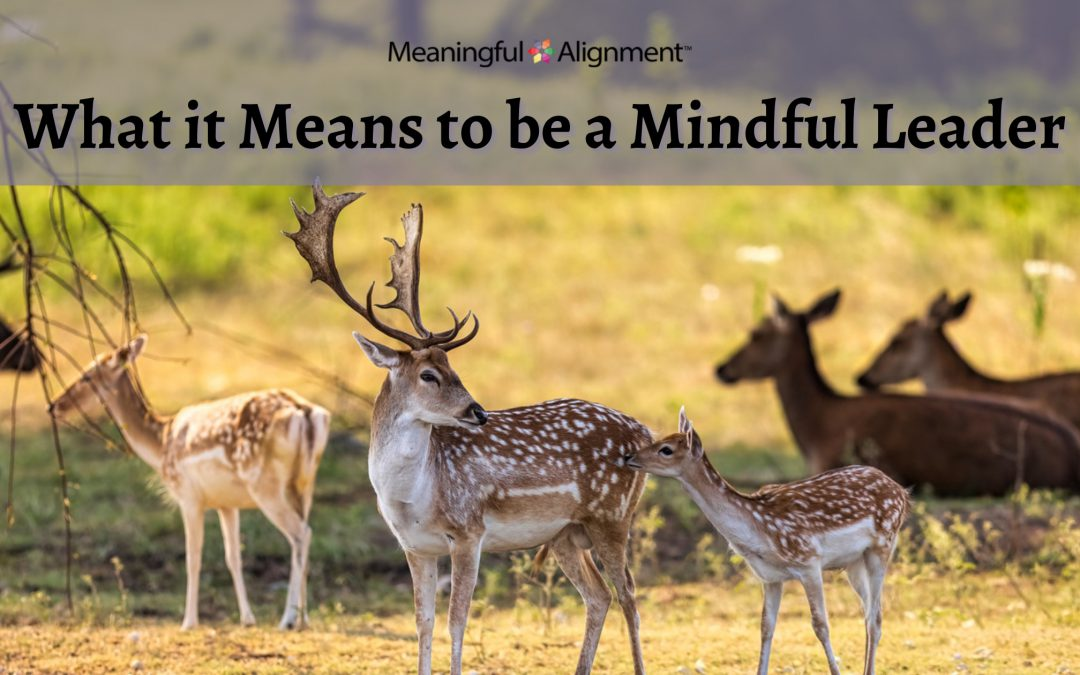 What it Means to be a Mindful Leader